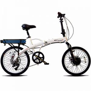 ProdecoTech Mariner 8 v5F 36V300W 8 Speed Electric Bicycle Review