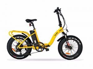 Ride Scoozy VeeGo Folding Fat Tire Electric Bicycle Review
