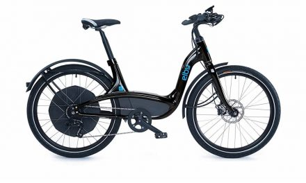 Elby Bike 9-Speed Electric Bike Review
