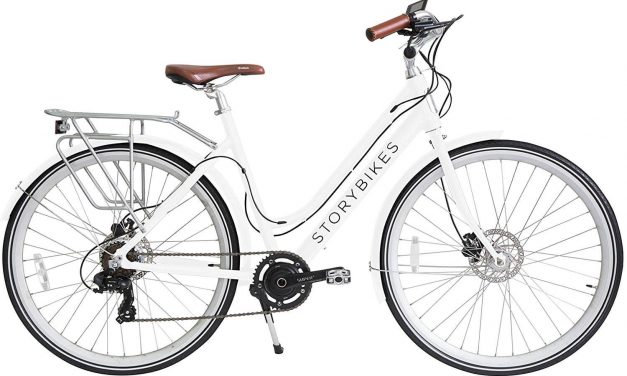 Story Bikes Electric Bike Review