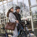 Elby Bike 9-Speed Electric Bike 7